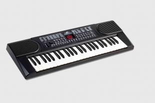 贵州新韵电子琴XY-202